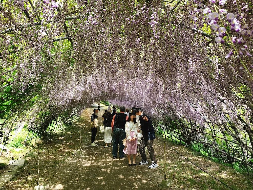 f:id:atamagaokashikunatta:20210502212403j:image