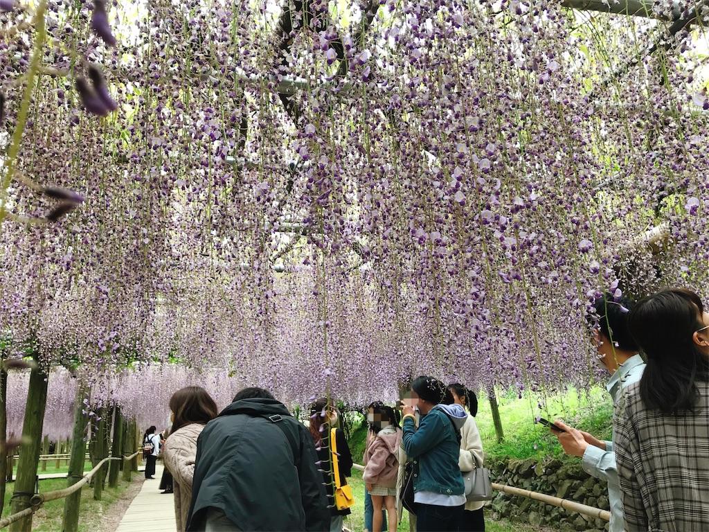 f:id:atamagaokashikunatta:20210502215751j:image