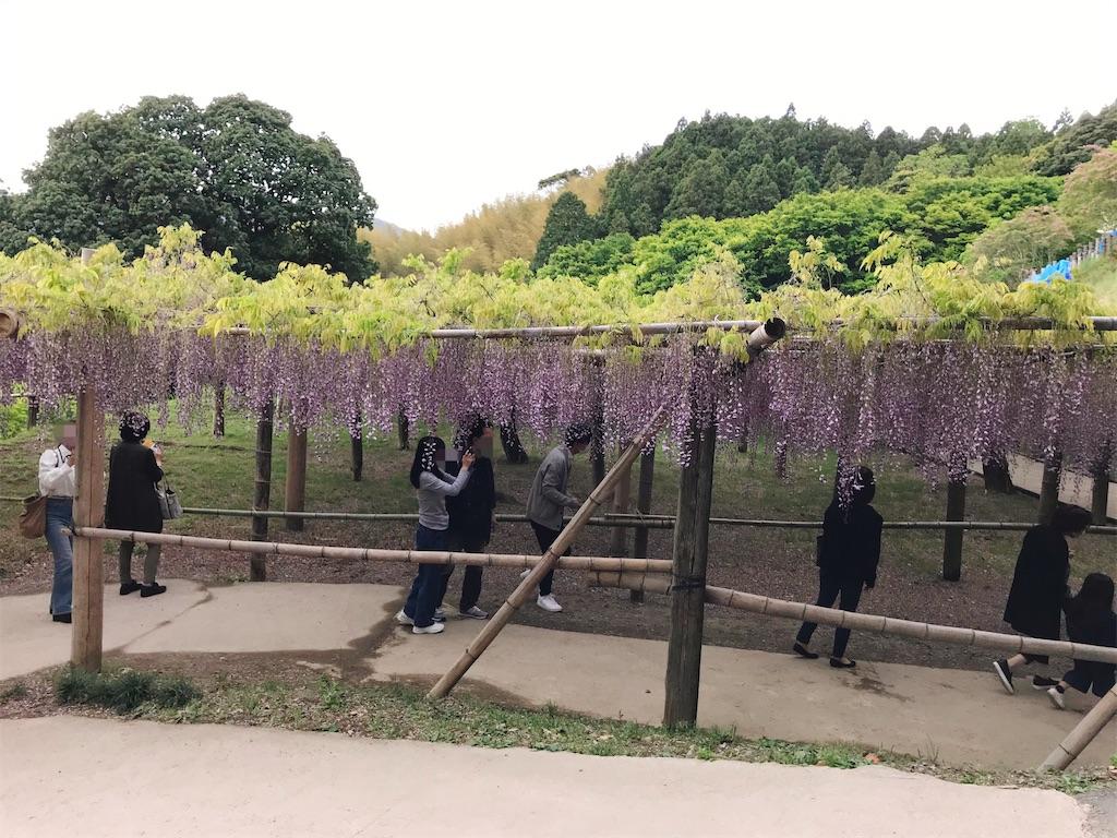 f:id:atamagaokashikunatta:20210502215757j:image