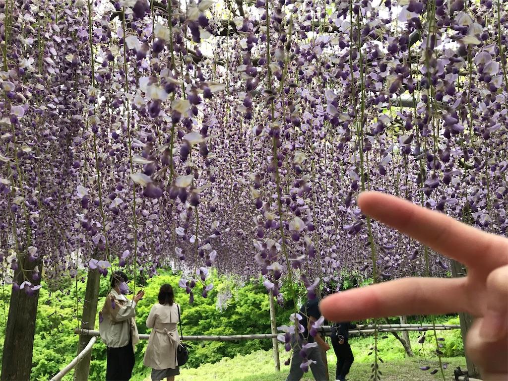 f:id:atamagaokashikunatta:20210502215815j:image