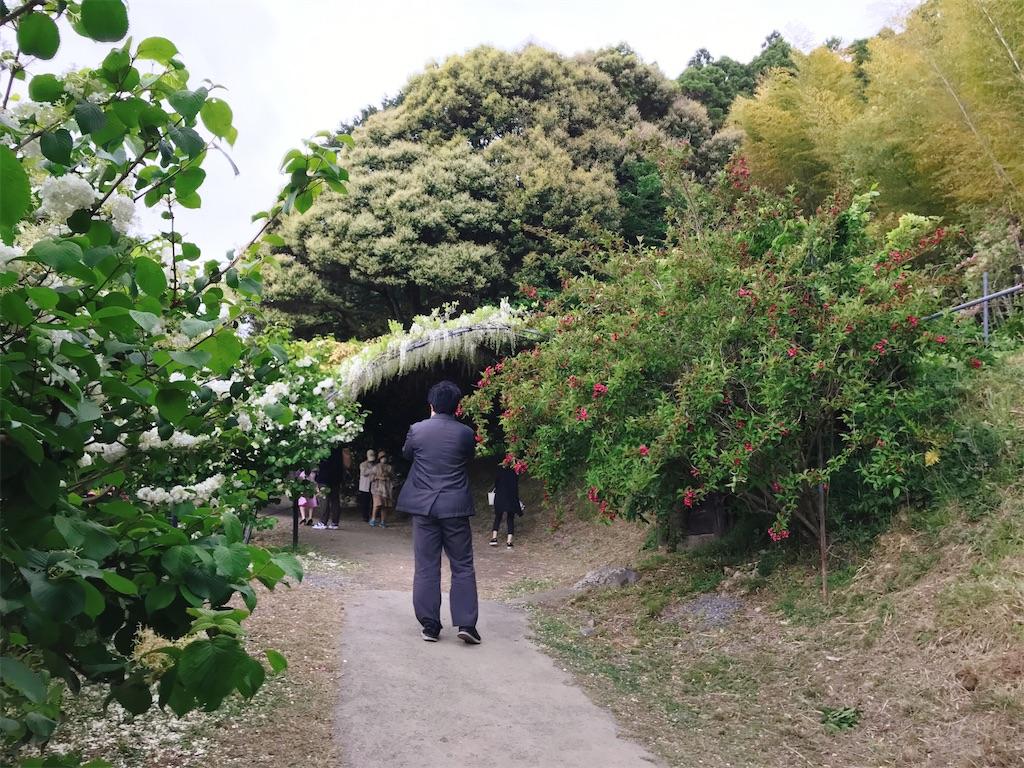 f:id:atamagaokashikunatta:20210502215826j:image