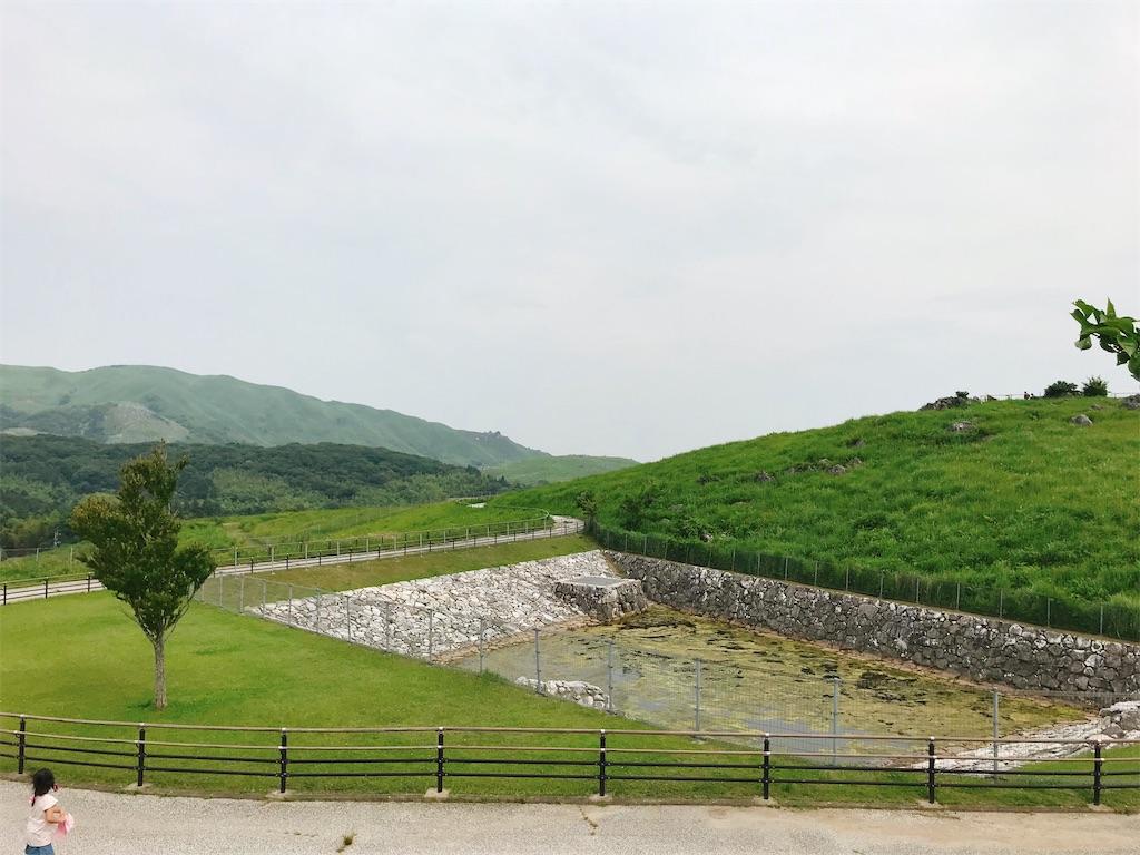 f:id:atamagaokashikunatta:20210626233051j:image