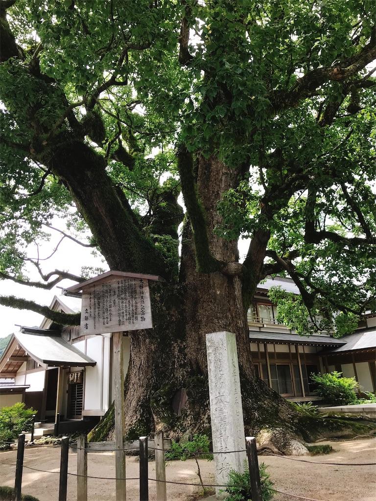 f:id:atamagaokashikunatta:20210719221505j:image