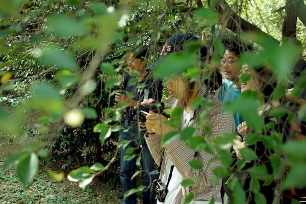 f:id:atatakai-fuku:20090101052943j:image