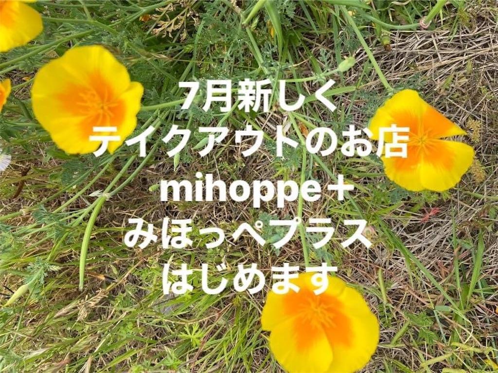 f:id:atelier-mihoppe:20200615120518j:image