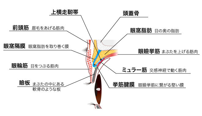 f:id:atsuhiro-me:20120313010657j:plain:w300