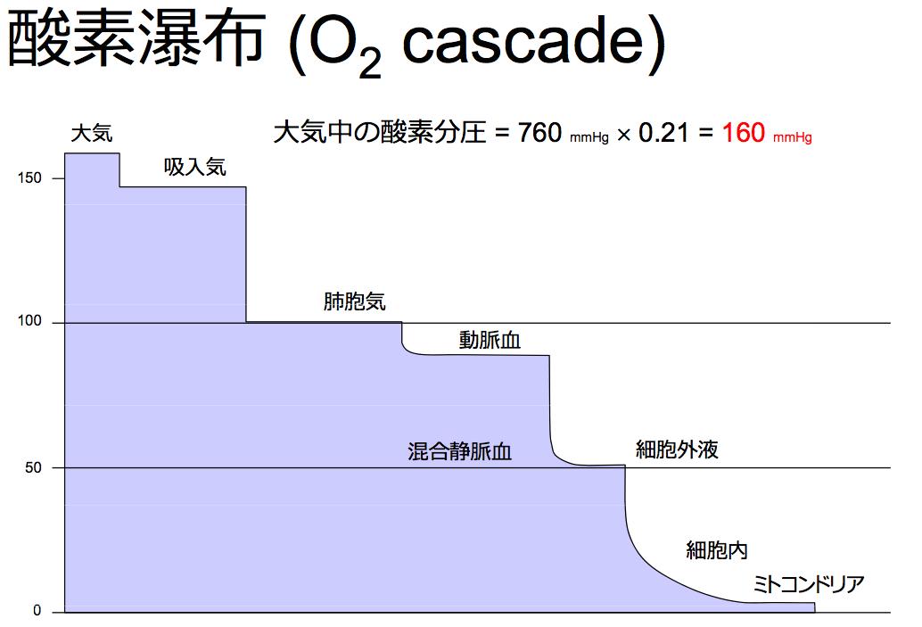 f:id:atsuhiro-me:20151118140413p:plain:w300