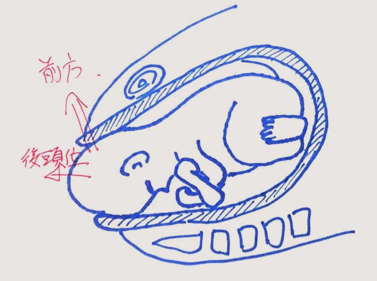 f:id:atsuhiro-me:20151118140430j:plain:w300