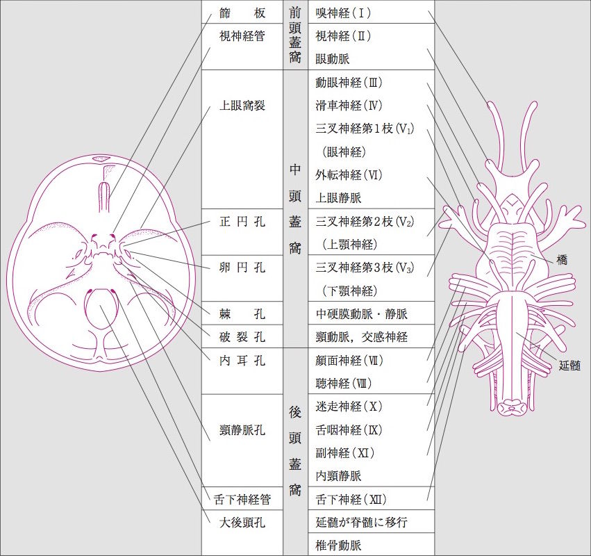 f:id:atsuhiro-me:20151122234132j:plain