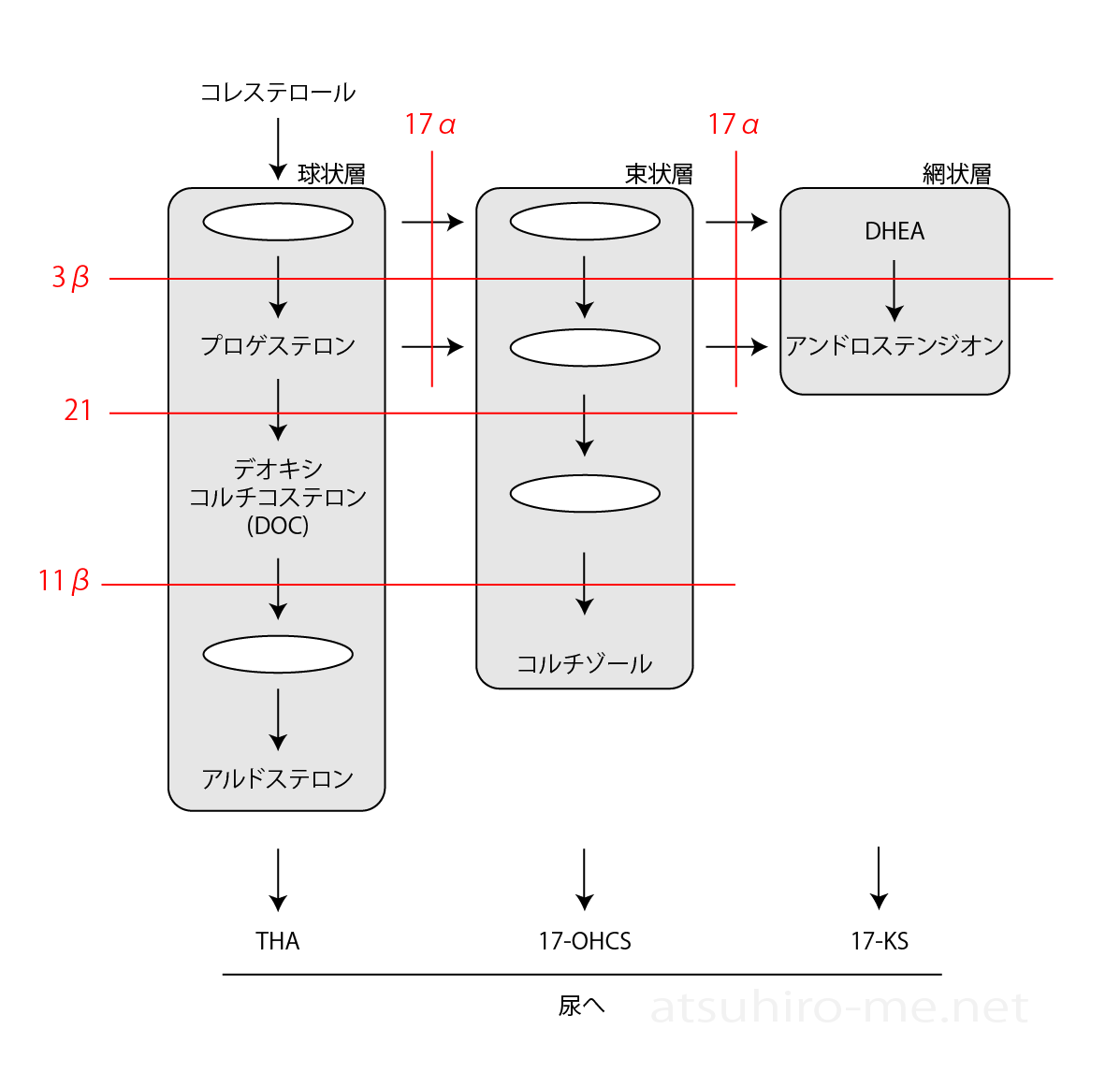 f:id:atsuhiro-me:20160121100026p:plain:w300