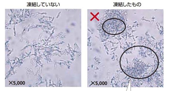 f:id:atsuhiro-me:20160616235805j:plain:w300
