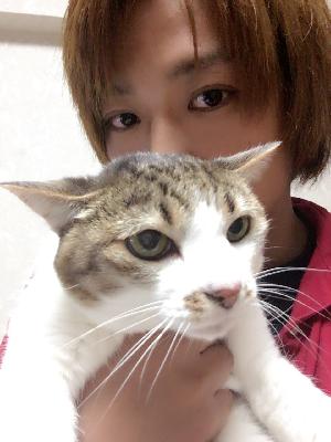 f:id:atsukichikun:20161031182332p:plain