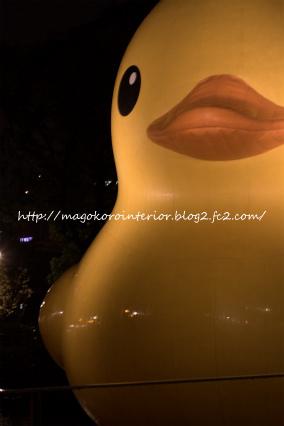 re-2011_10_30_IMG_0047.jpg