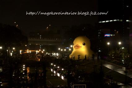 re-2011_10_30_IMG_0061.jpg