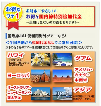 JAL国際線特別追加代金