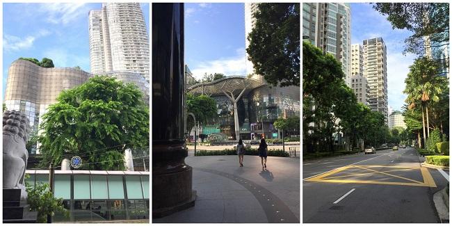singapore Orchard station 2016-10-08