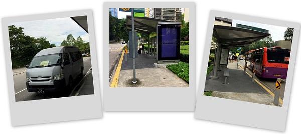 Singapore ZOO SAEx Bus 012016-10-08