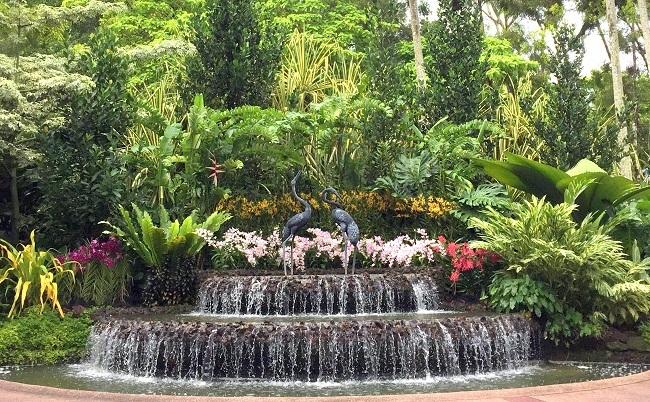 Singapore Botanic Garden National Orchid Garden 01IMG_6869
