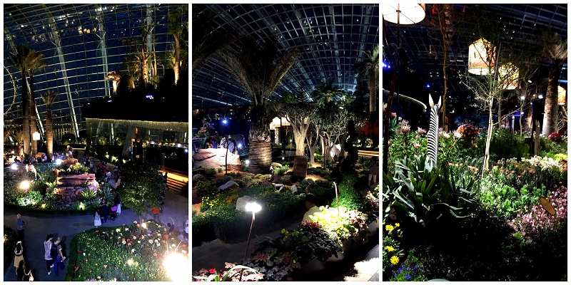 Garden By The Bay Flower Dome 01 2016-10-09