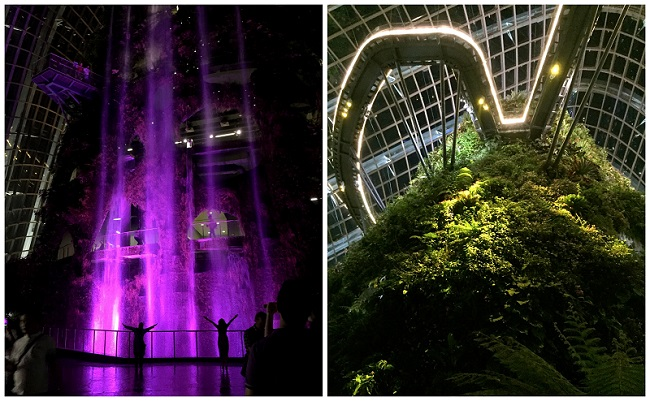 Garden By The Bay Cloud Forest01 2016-10-09