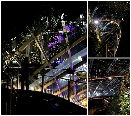 Garden By The Bay Cloud Forest03 2016-10-09