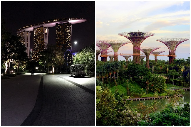 Marina Bay Sands Gardens By The Bay 2016-10-091