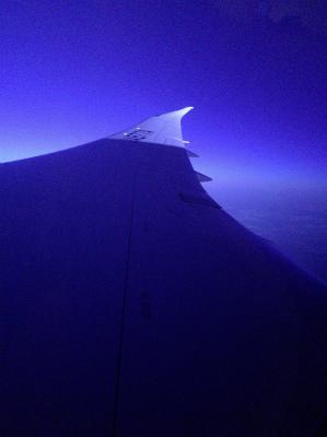 ANA 前全日空 羽田 シドニー便 NH879便 窓から見える景色1