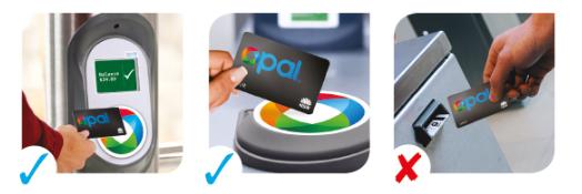 オーストラリア NSW Opalカード カードリーダー タップオン