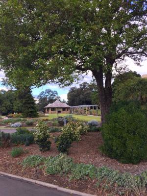 ロイヤル・ボタニックガーデン 王立植物園 バラ園と休憩所