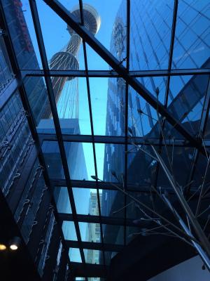 オーストラリア シドニー シドニータワー ウエストフィールドシドニー レベル5 フードコートのガラス天井