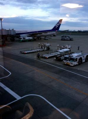 東京 羽田空港 ANA 到着