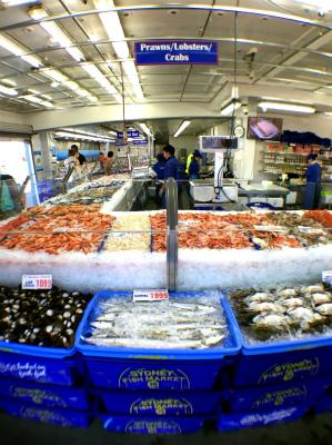 オーストラリア シドニーのフィッシュ・マーケット内 鮮魚売り場
