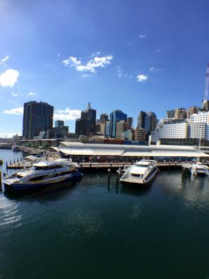 オーストラリア シドニーのダーリングハーバー ピアモントブリッジを渡る