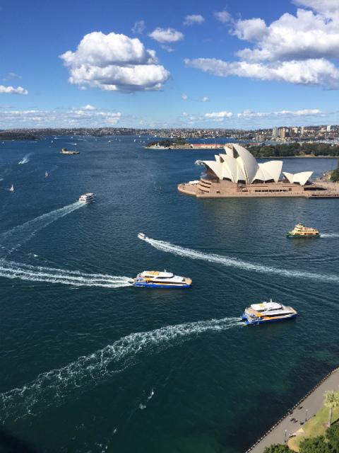 オーストラリア シドニー パイロンルックアウトからの眺め オペラハウスとフェリーが行き交う