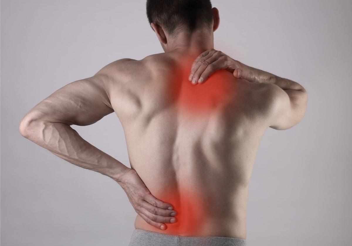 筋肉痛が治ったら同じ部位を鍛える
