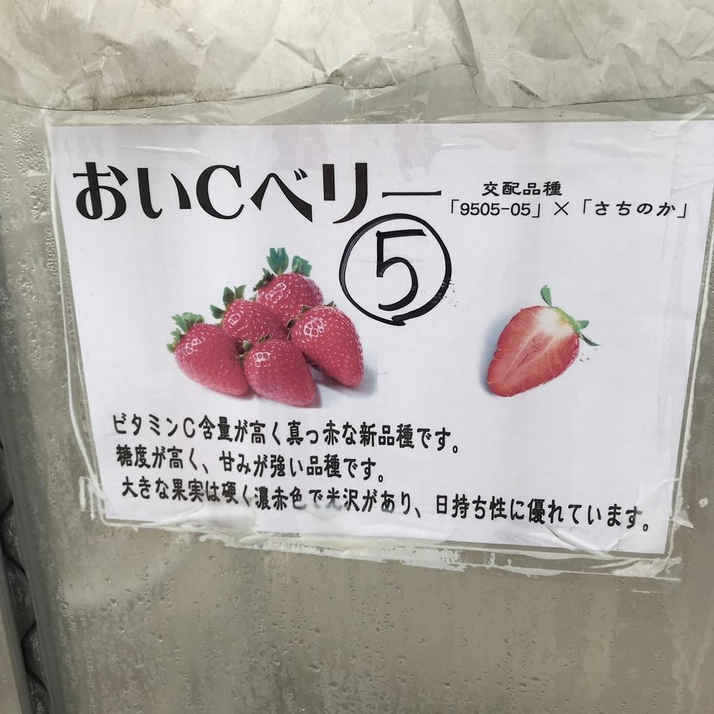 f:id:atsush-atsushi:20190210215609j:plain