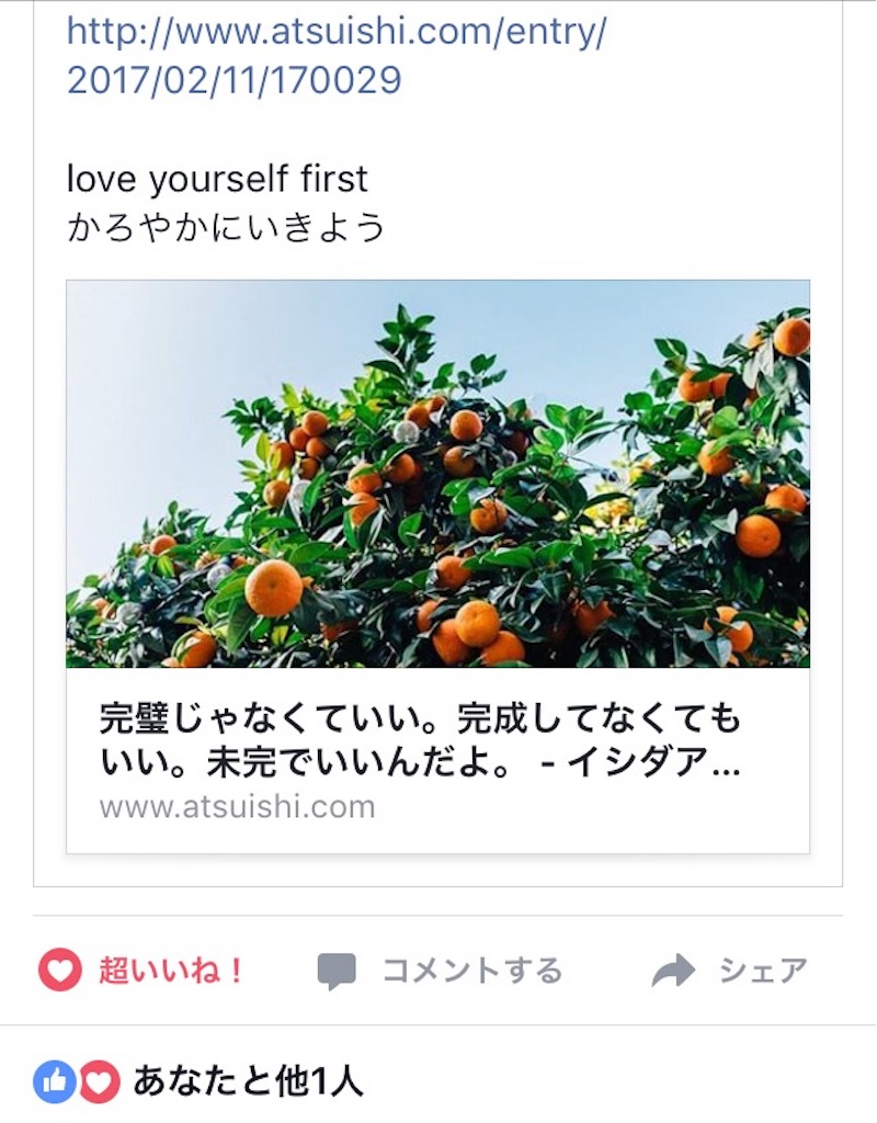 f:id:atsushi-ishida-ai:20170211205647j:image