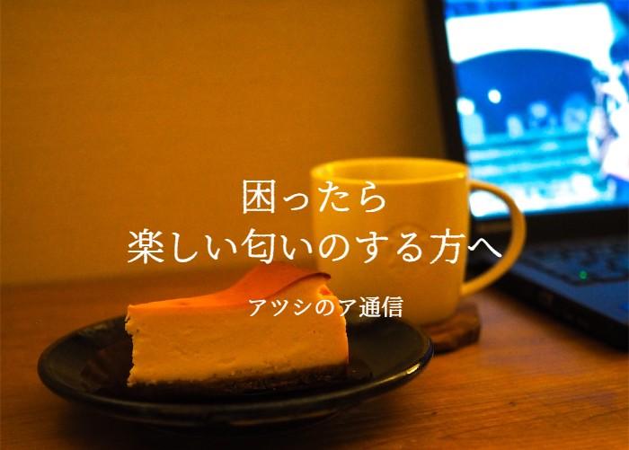 f:id:atsushi-ishida-ai:20200518192018j:plain
