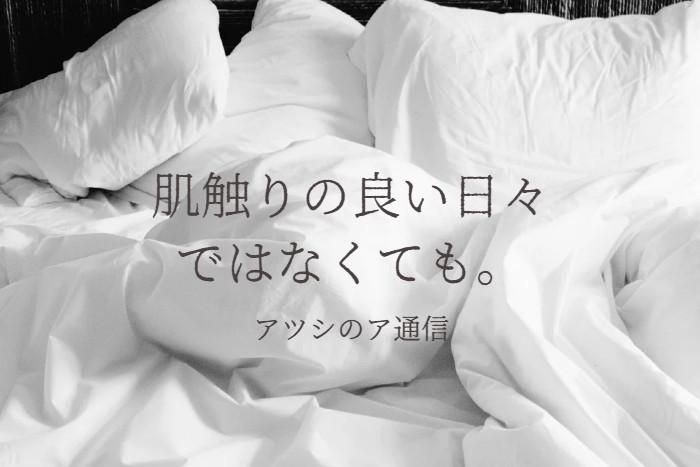 f:id:atsushi-ishida-ai:20201218031147j:plain