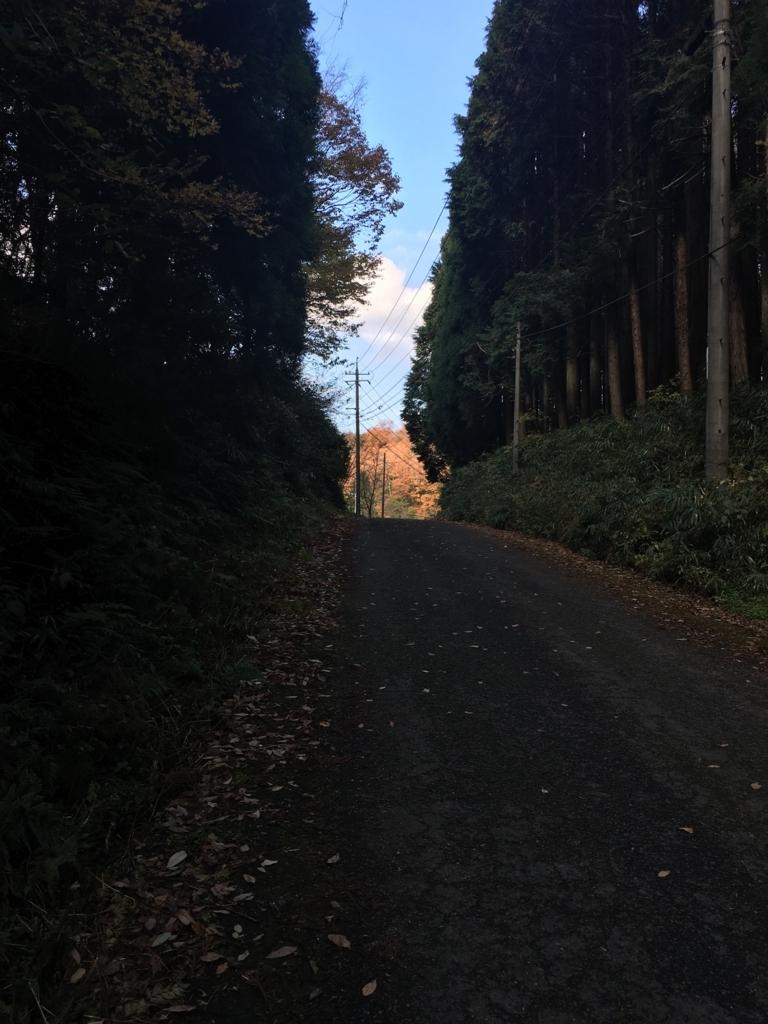 f:id:atsushikame:20171203093726j:plain