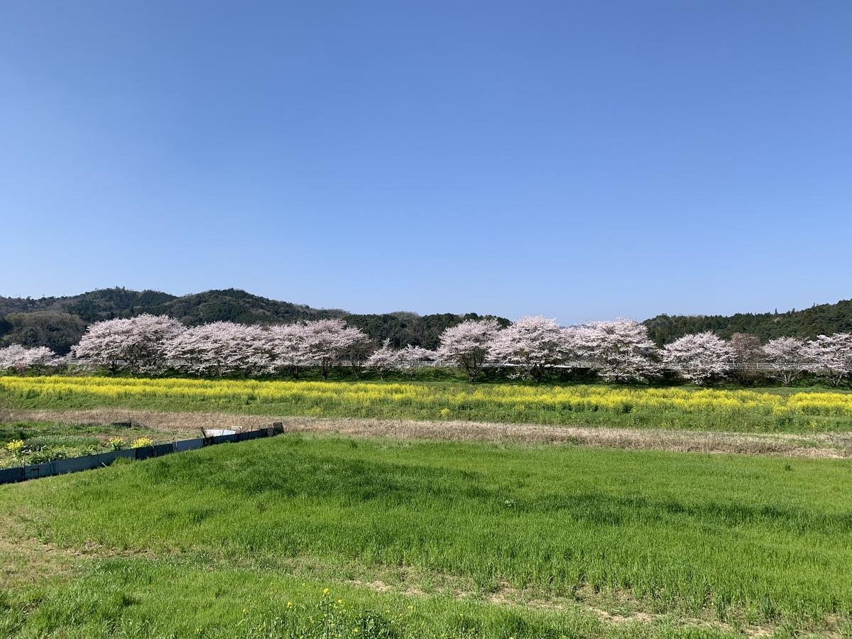 f:id:atsushikame:20200412113940j:plain
