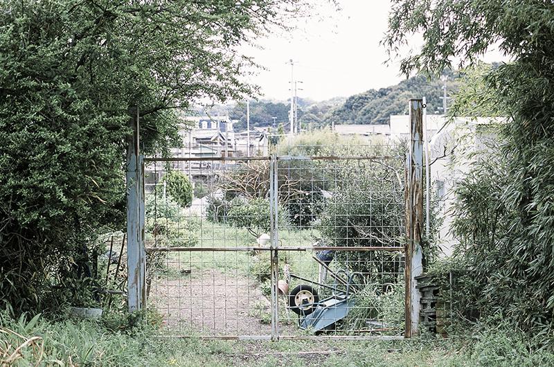 f:id:atsushimorimotophotos:20170422185217j:plain
