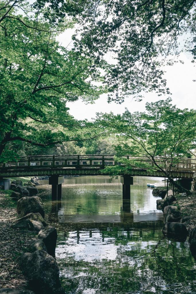 f:id:atsushimorimotophotos:20170513231553j:plain
