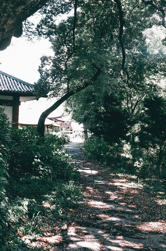 f:id:atsushimorimotophotos:20180429192725j:plain