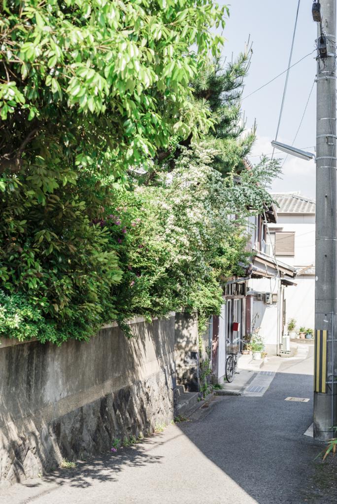 f:id:atsushimorimotophotos:20180504190935j:plain