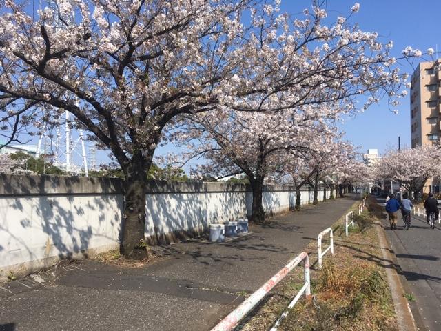 f:id:atsushisugimoto:20200416220032j:plain