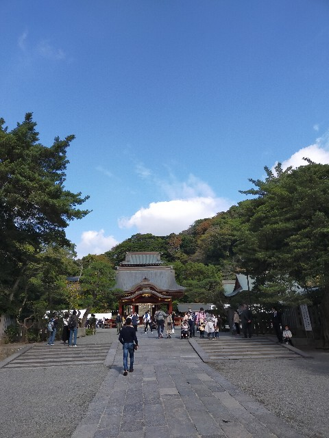f:id:atsuyoshiblog:20201110200557j:image