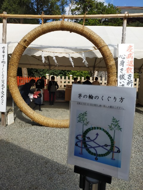 f:id:atsuyoshiblog:20201110200645j:image