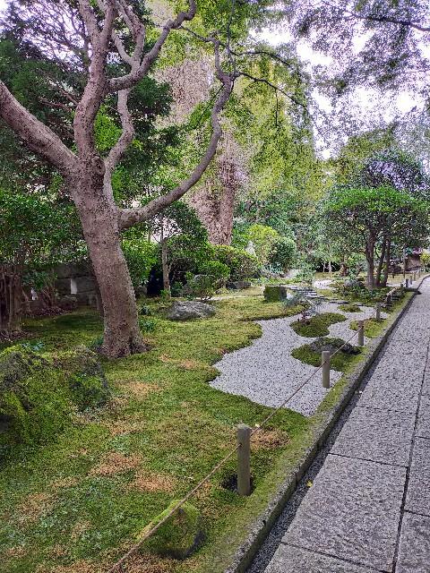 f:id:atsuyoshiblog:20201111202255j:image