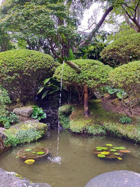 f:id:atsuyoshiblog:20201111202316j:image